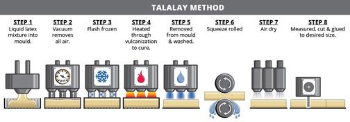 Proceso de producción de látex Talalay