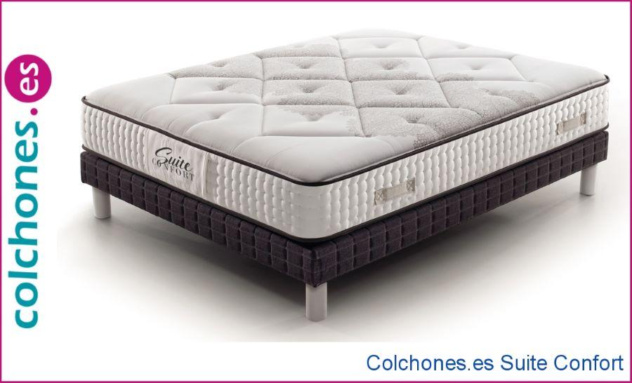 Colchón Sealy Iowa Firm comparado con el colchón Suite Confort