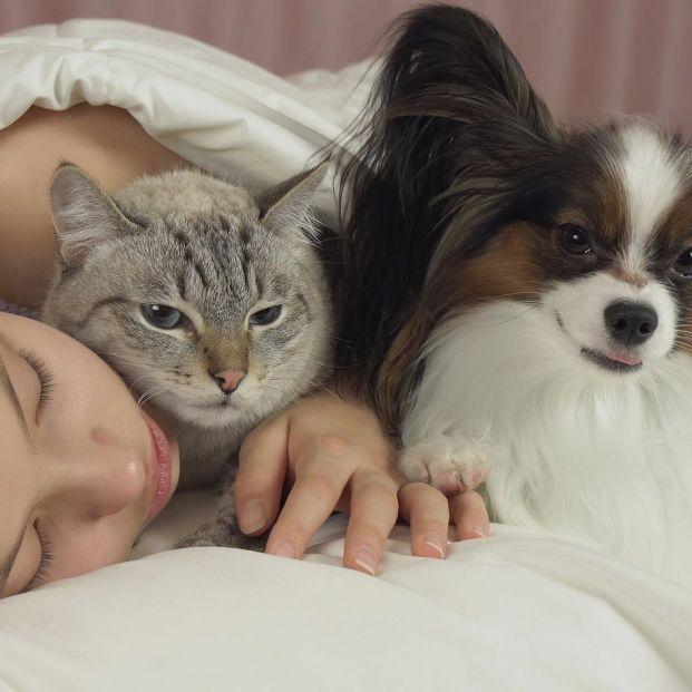 Dormir con animales