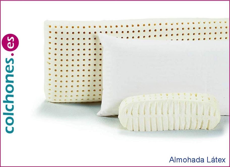 Almohada de Látex Colchones.es