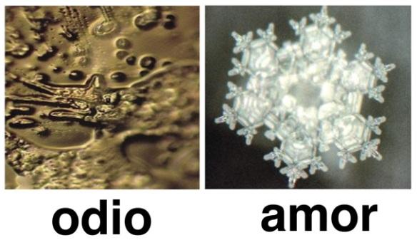 Moléculas del agua Masaru Emoto. Fuente: http://www.lacajadepandora.eu/