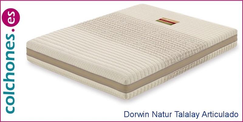 colchón Dorwin Natur Talalay Articulado