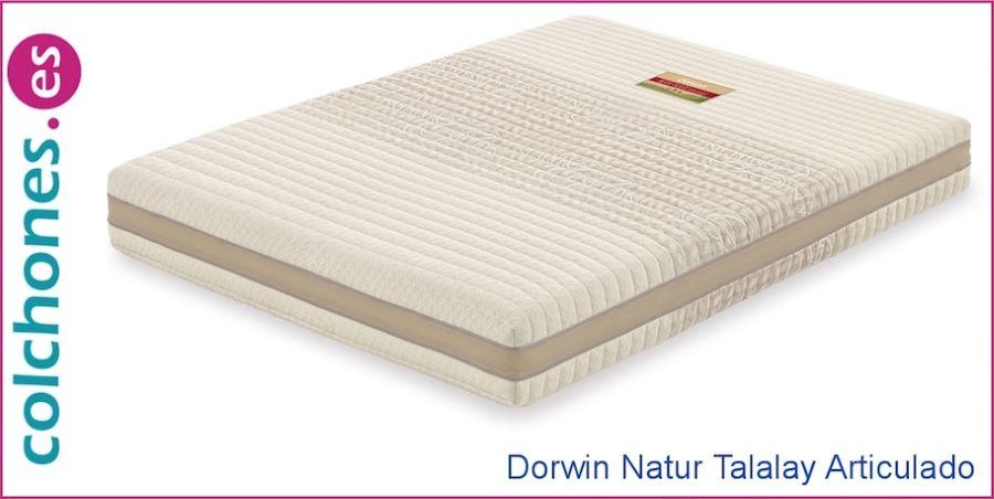 colchón eco de látex Dunlop y talalay