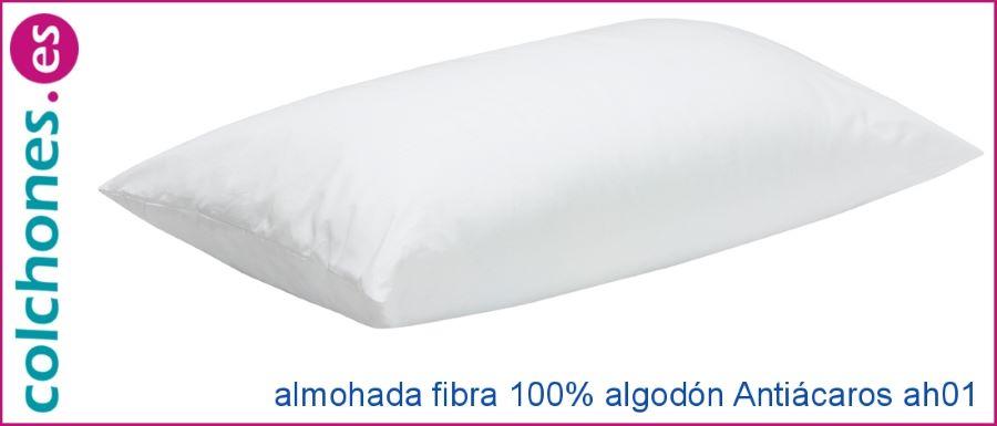 Catálogo 2021 de almohadas Pikolin Home